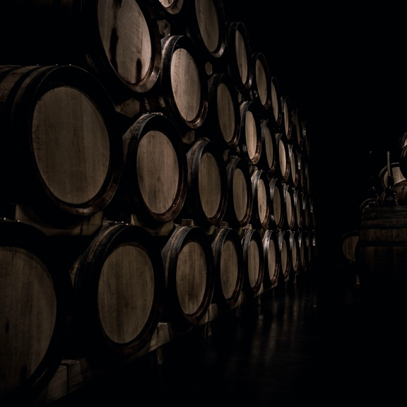KG vino - proizvodnja